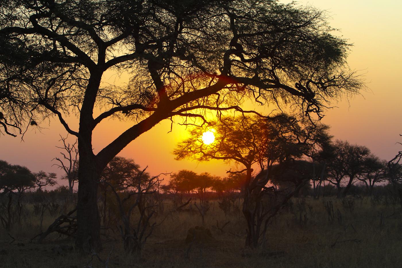 Africa - Exclusive Adventures