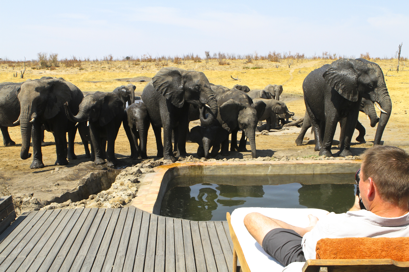 Unforgettable Zimbabwe Safari - Exclusive Adventures -