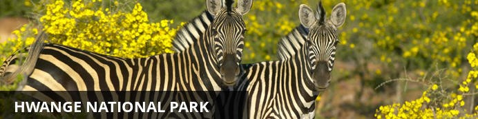 Unforgettable Zimbabwe Safari - Exclusive Adventures - Hwange National Park