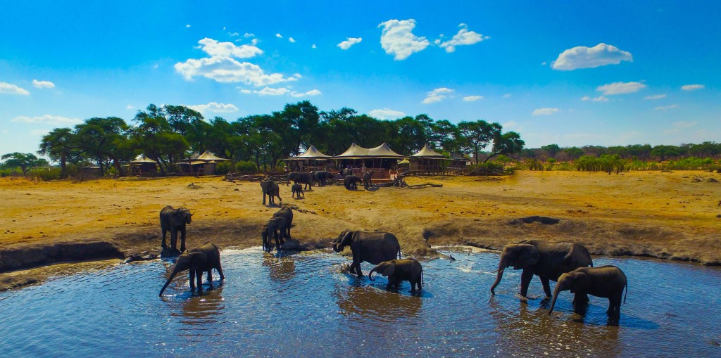 Unforgettable Zimbabwe Safari - Exclusive Adventures