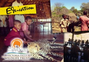 Unforgettable Zimbabwe Safari - Exclusive Adventures - Victoria Falls Wildlife Trust