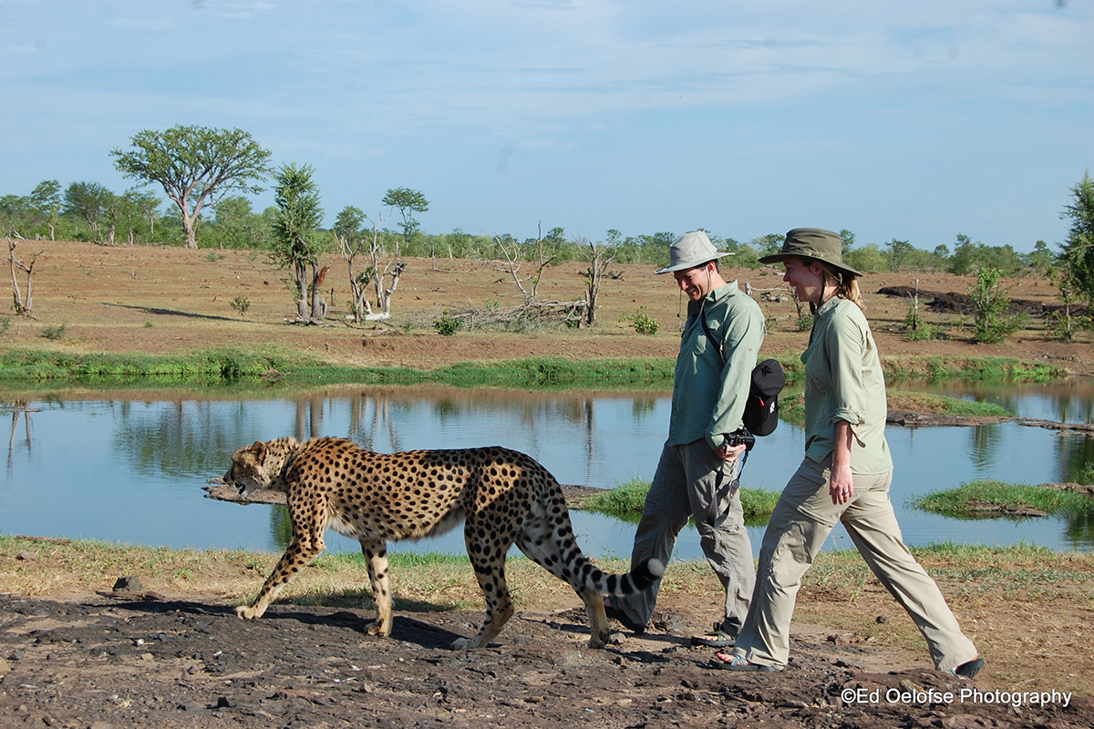 Unforgettable Zimbabwe Safari - Exclusive Adventures - Walk with Sylvester